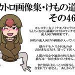 スカトロ画像集・けもの道編その46