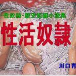 SM・性奴隷・歴史短編小説集「性活奴隷」
