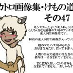 スカトロ画像集・けもの道編その47