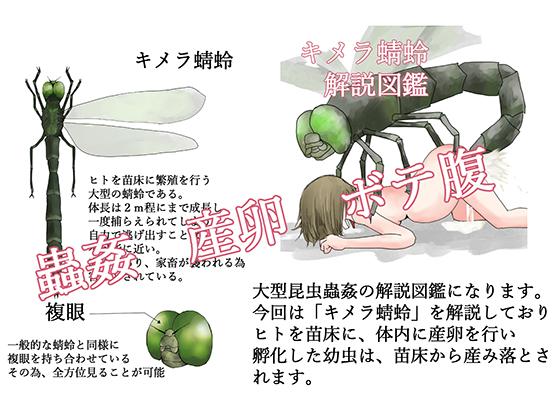 [RJ257861][てるてるがーる] キメラ蜻蛉 解説図鑑
